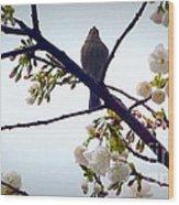 Singing Of Spring Wood Print