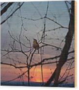 Singing Songs Of Spring Wood Print