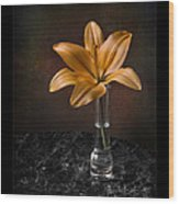 Single Asiatic Lily In Vase Wood Print