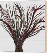 Single Bare Tree Isolated Wood Print