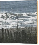 Single Dune Fence Wood Print