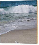 Single Seagull On The Beach Wood Print