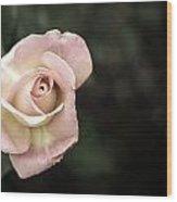 Single Muted Rose Wood Print