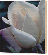 Single N White Wood Print