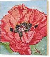 Single Oriential Poppy Wood Print