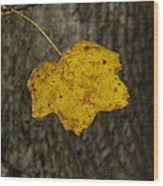 Single Poplar Leaf Wood Print