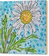 Single Summer Daisy Wood Print