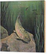 Single Trout Wood Print