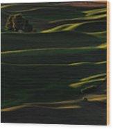 Sinuous Wood Print