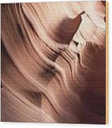 Sinuous Shapes Wood Print
