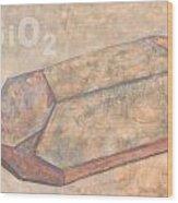 Sioc2 Wood Print
