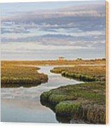 Sippewissett Marsh Wood Print