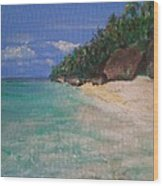 Siquijor Beach Wood Print