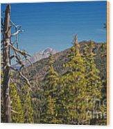 Siskiyous And Shasta Wood Print