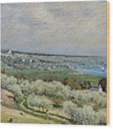 Sisley Saint-germain, 1875 Wood Print