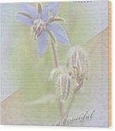 Sister Birthday Greeting Card - Borage - Borage Officinalis Wood Print