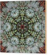 Sister Cactus Mandala Wood Print