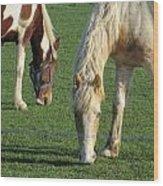 Sister Horses Wood Print