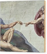 Sistine Chapel Ceiling Wood Print