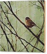 Sittin' In A Tree Wood Print