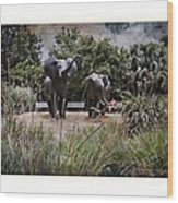 Sitting By The Elephants Wood Print