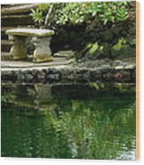 Sitting By The Pond Wood Print