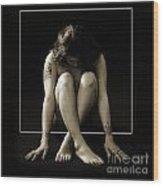 Sitting In The Box 1058.01 Wood Print