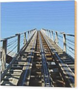 Six Flags America - Roar Roller Coaster - 12121 Wood Print