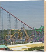 Six Flags America - Wild One Roller Coaster - 12123 Wood Print
