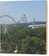 Six Flags Great Adventure - 12127 Wood Print