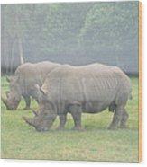 Six Flags Great Adventure - Animal Park - 121219 Wood Print