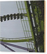 Six Flags Great Adventure - Medusa Roller Coaster - 12122 Wood Print by DC Photographer