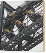 Six Flags Great Adventure - Medusa Roller Coaster - 12123 Wood Print