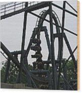 Six Flags Great Adventure - Medusa Roller Coaster - 12124 Wood Print