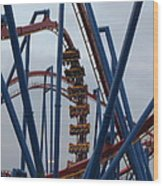 Six Flags Great Adventure - Medusa Roller Coaster - 12125 Wood Print