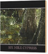 Six Mile Cypress Fort Myers Florida Wood Print
