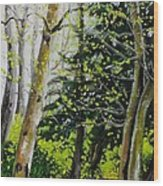 Skagit Valley Forest Wood Print
