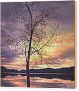 Skaha Lake On A Saturday Morning Wood Print