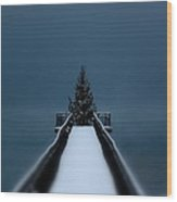 Skaneateles Lake Holiday Card Wood Print