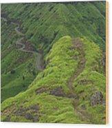 Skc 3577 Path Passing Wood Print