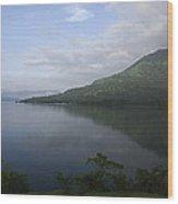 Skc 3961 Lyrical Landscape Wood Print