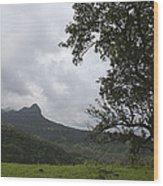 Skc 4006 Customized Landscape Wood Print
