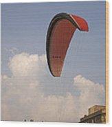 Skc 4615 Landing Wood Print