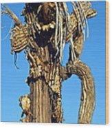 Skeleton Of A Saguaro Tree Wood Print