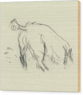 Sketch Of A Dog Digging A Hole Wood Print