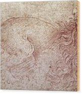 Sketch Of A Roaring Lion Wood Print by Leonardo Da Vinci