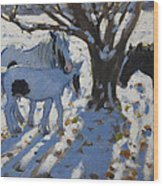 Skewbald Ponies In Winter Wood Print
