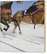 Ski Joring Race Wood Print