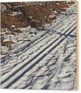 Ski Track In Sunlight In Spring Wood Print