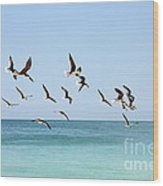 Skimmers And Swimmers Wood Print by Carol Groenen